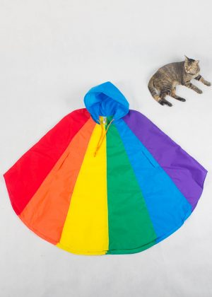 Rainbow Poncho Blue With Cat